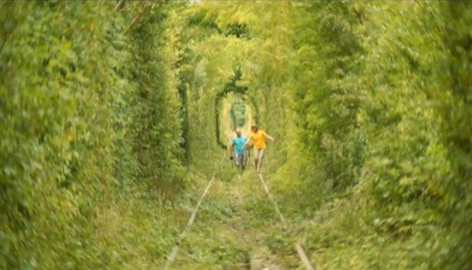 """Vedere de la ţară. """"Tunelul dragostei"""", unul dintre cele mai romantice locuri din România"""