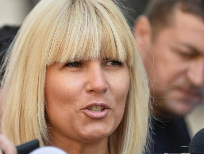 Elena Udrea nu a scăpat de controlul judiciar. Cererea sa a fost amânată