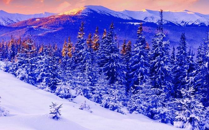 Image result for munti in tg neamt imagini cu zapada