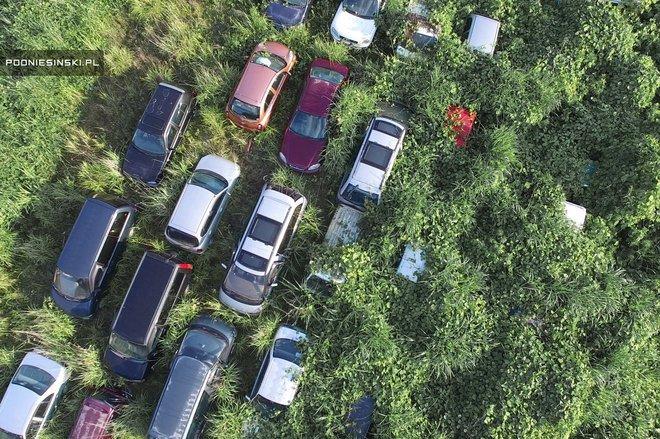 Imagini incredibile. Vezi cum arată Fukushima după accidentul nuclear din 2011