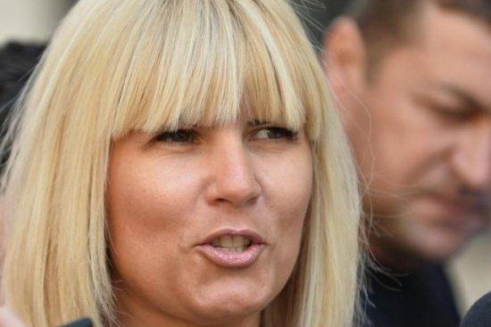 """Elena Udrea, la Parlament pentru a-şi studia dosarul. """"E lipsit de sens ce se întâmplă"""""""