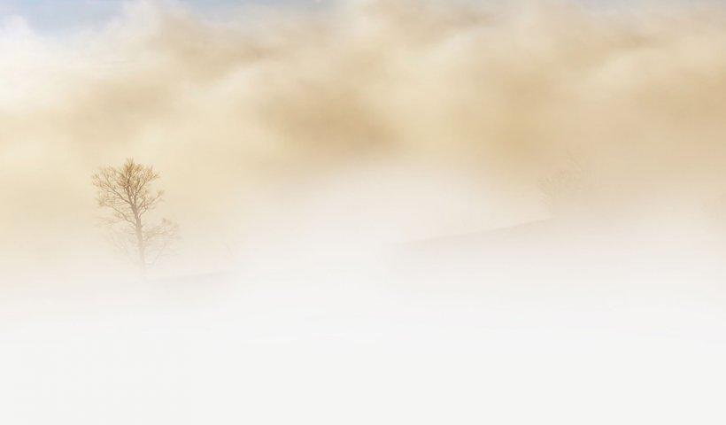 Cod Galben de ceață și vizibilitate redusă în 32 de județe și municipiul București
