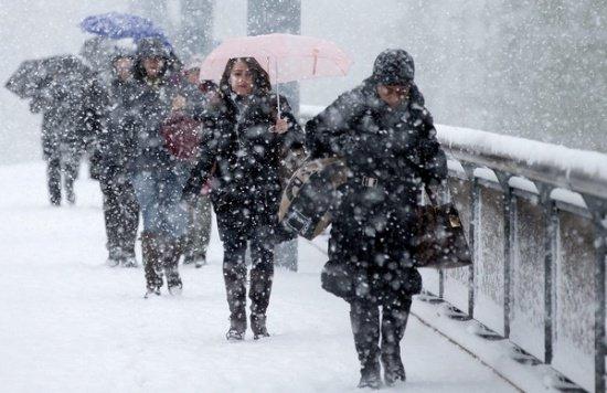 Ninge în București și în alte zone din țară