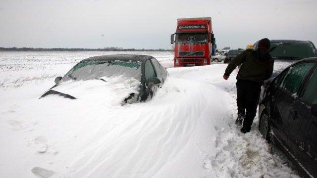 Iarna blândă ţine cu autorităţile incompetente. Perdele forestiere pentru autostrăzi, abia peste două decenii