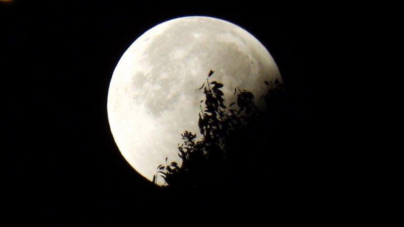 Fenomen astronomic deosebit: Lună plină de Crăciun, prima dată după 38 de ani