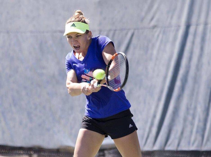 Simona Halep, la fel ca Maria Șarapova. Ce au în comun cele două jucătoare în alegerea antrenorului