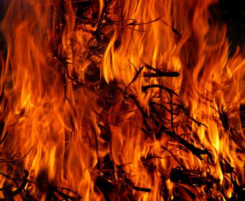 Incendiu masiv în California. Peste 1.200 de acri de pământ au fost distruşi
