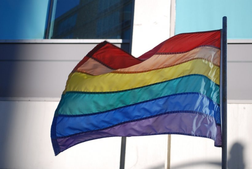 Scandal pe legea căsătoriei. Membrii comunităţii gay susţin că sunt discriminaţi
