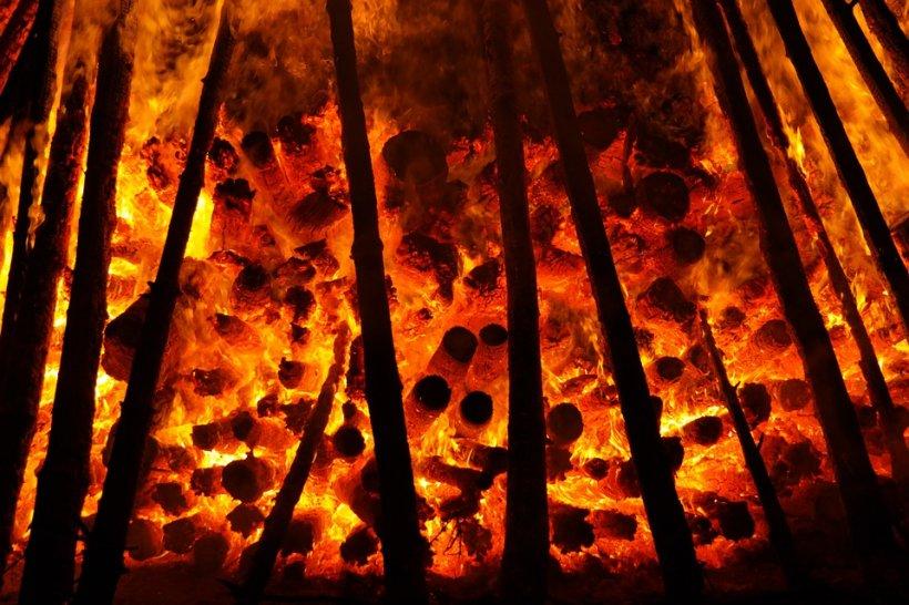 Incendii masive în Australia. Peste 70.000 de hectare au fost distruse