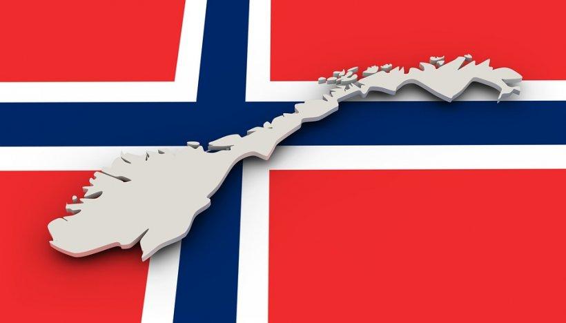 Ambasada Norvegiei la București, precizări cu privire la cazul familiei Bodnariu