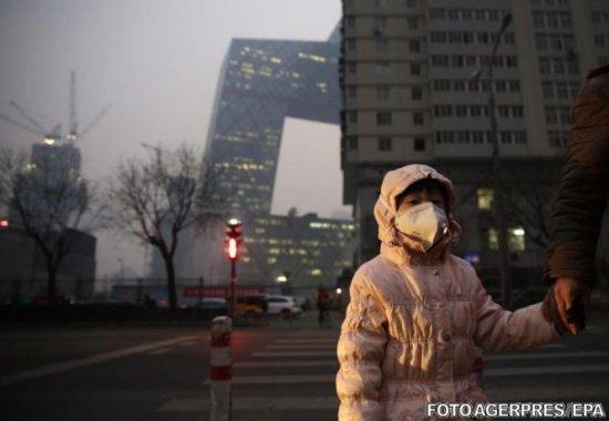 """Lupta împotriva poluării. A fost inventat """"saculeţul cu plante"""" ce filtrează aerul"""