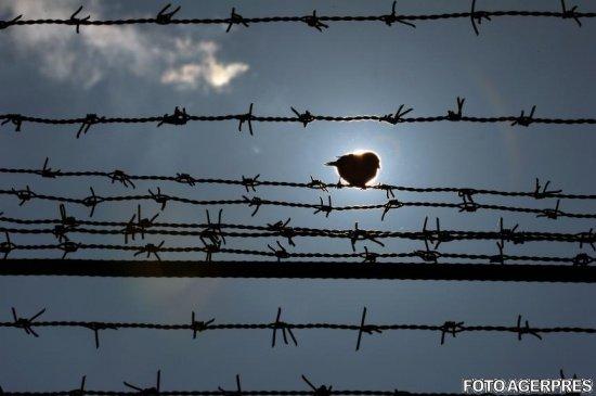 Ungaria amenință din nou România cu ridicarea unui gard la graniță
