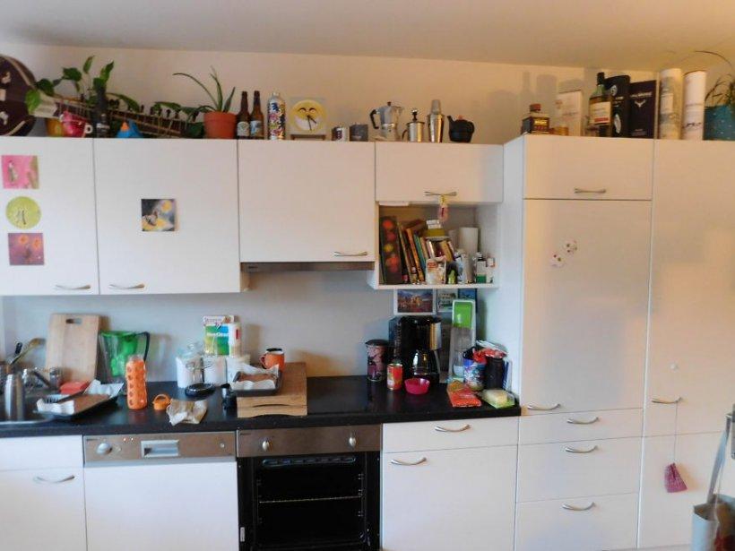 Poza care a înnebunit internetul. Tu poți să vezi unde se ascunde pisica din această imagine?