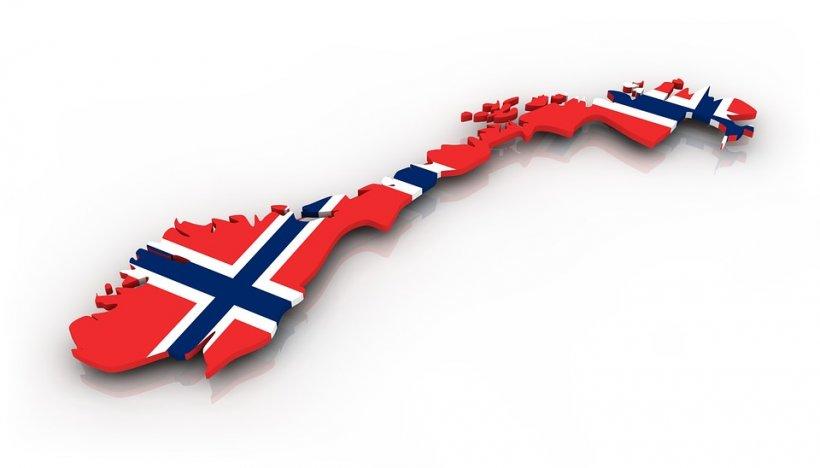 Cazul Bodnariu modifică legea în Norvegia