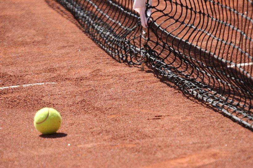 Horia Tecău, calificat în finala Australian Open la dublu-mixt