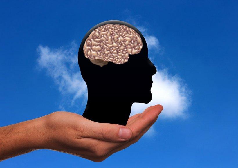 """""""O bombă reală în domeniul neurologiei"""". E incredibil ce e capabil să facă creierul uman"""