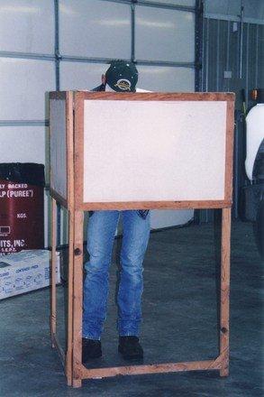 Cum se pot înscrie în Registrul electoral românii din diaspora