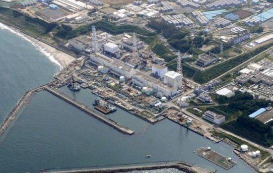 Fenomenul din zona contaminată Fukushima. Oamenii sunt îngroziți și nu știu cum să-l oprească