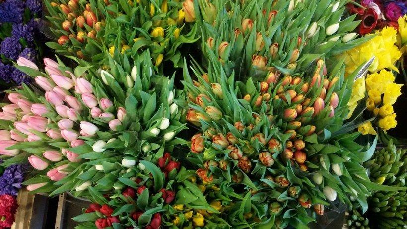 Sfântul Gheorghe și Florii. Analiză KeysFin - Afacerile cu flori cresc spectaculos pe fondul apetitului românilor pentru zile onomastice