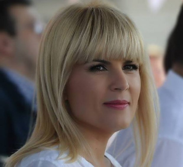 Terenul care îi dădea insomnii Elenei Udrea, scos la licitație