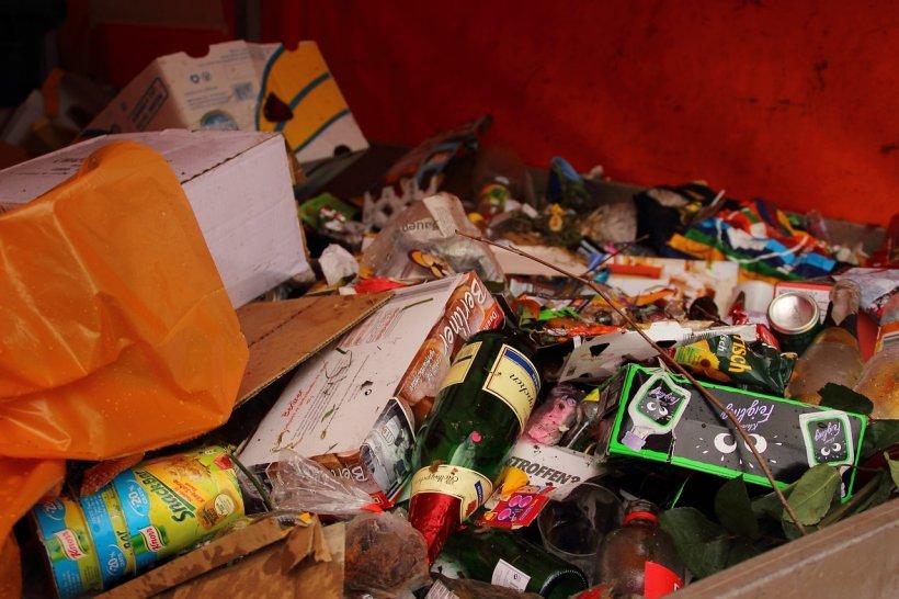Strangea gunoiul dintr-un tomberon cand a observat ca unul dintre saci se misca singur. Cand l-a deschis a avut un soc! Ce era in interiorul lui