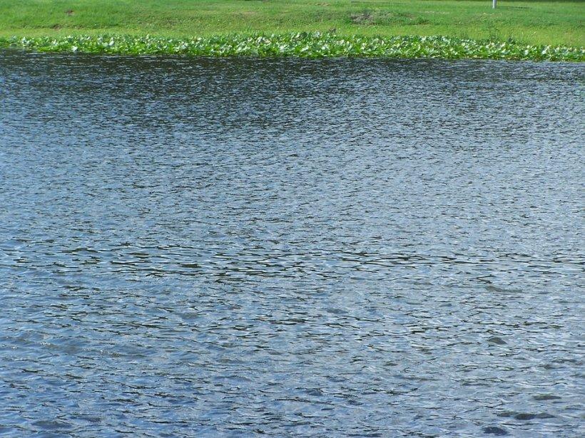 Apele unui lac şi-au cerut tributul! Un băiat de 12 ani a murit înecat, după ce nu a mai reuşit să se întoarcă la mal