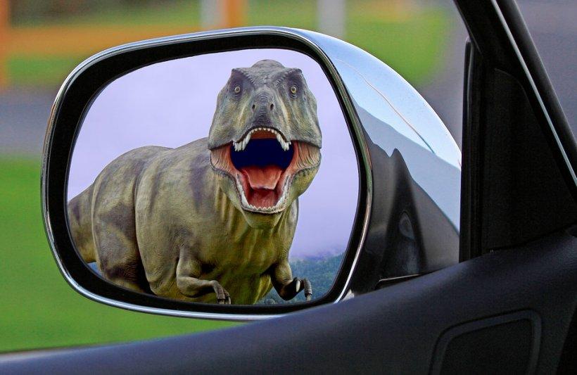 Cum să îți aperi oglinzile de la mașină de hoți. Imaginile fac senzație pe internet
