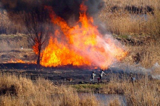 Risc major de incendii de vegetaţie în Bulgaria. Autoritățile sunt în alertă