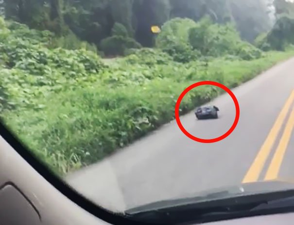 """Se ducea la serviciu, când a văzut o pungă de gunoi în mijlocul șoselei. """"Punga asta se mișcă sau mi se pare?"""" A oprit mașina și s-a apropiat. Ce a descoperit tânăra"""