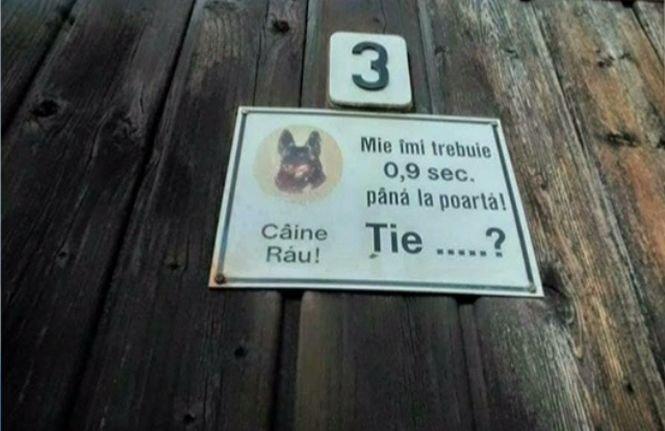 Deziluzia Optică. Atenție, câine răutăcios!
