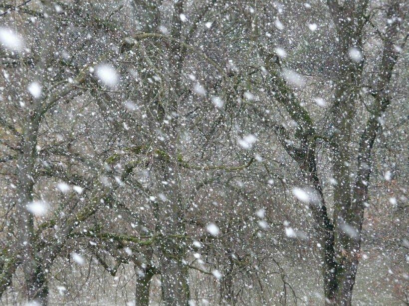 Cod Galben de ninsori și vânt puternic. Ce zone sunt vizate