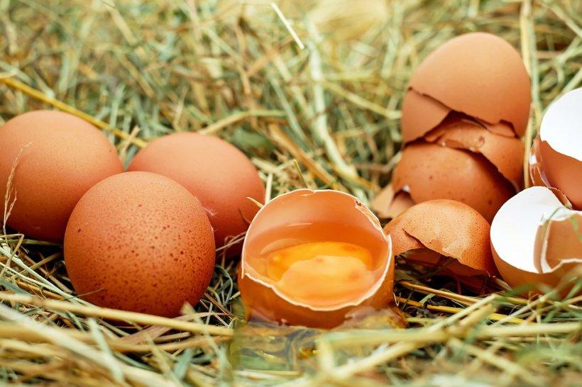 Alertă alimentară! Ouă cu Salmonella, retrase de pe piață. La ce pericol se expun consumatorii