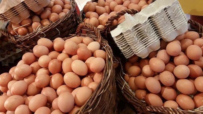 Jumătate din cantitatea de ouă cu salmonella a fost comercializată. Ce recomandă autoritățile