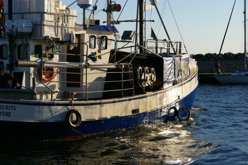 Au crezut că au dat lovitura, însă abia când au adus captura la bord au descoperit ce au prins. Imagini fabuloase filmate de un pescar!