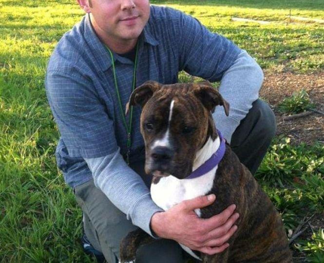 """Un câine și-a luat """"rămas-bun"""" de la stăpânul său aflat pe moarte, la spital. Imaginile au impresionat milioane de oameni – VIDEO"""