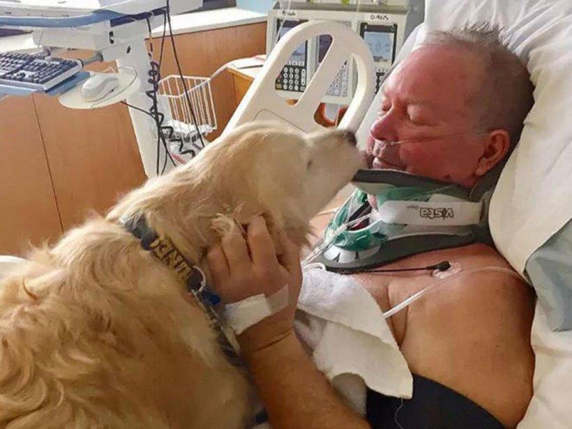 Dragoste de câine! Și-a salvat stăpânul de la moarte sigură, după ce a alunecat pe gheață și și-a rupt gâtul