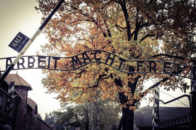 Povestea celor șapte pitici maramureșeni de la Auschwitz