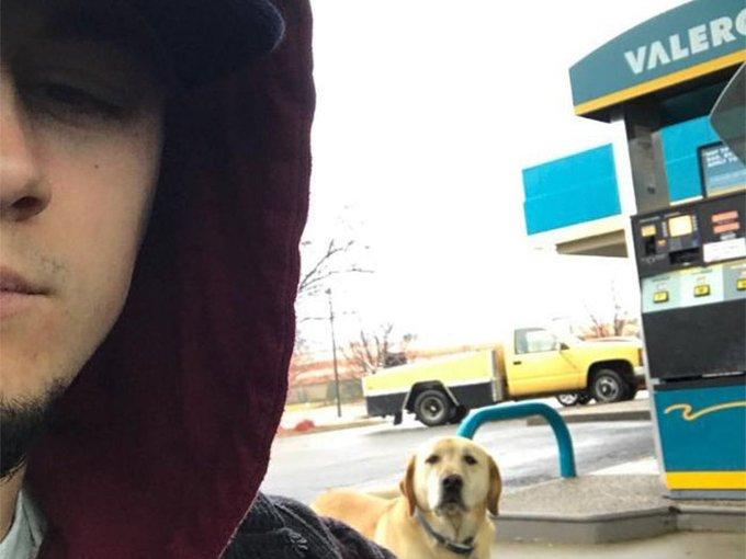 Acest tânăr a găsit un câine pe stradă, însă când s-a uitat ce scria pe plăcuţa prinsă de zgardă a avut un şoc! Povestea incredibilă a făcut înconjurul planetei