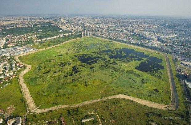 Delta Văcărești, administrată de Primăria Capitalei