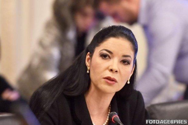 """Ministrul interimar al Justiţiei, Ana Birchall: """"Sunt convinsă că toate criticile constructive mă vor face un ministru mai bun"""""""