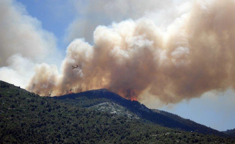 Incendii puternice în Noua Zeelandă. Sute de case au fost evacuate, stare de urgență în mai multe zone