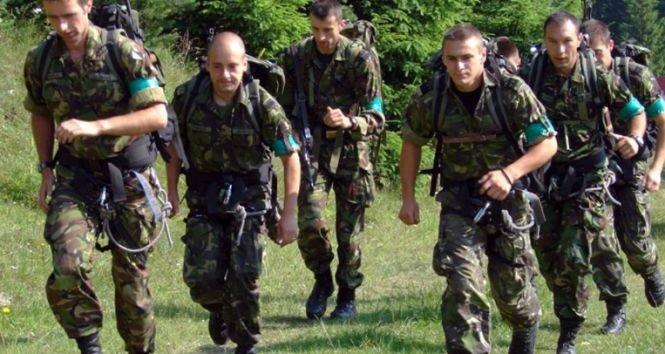 Exerciţii militare de amploare în România. Desfășurare de forțe în poligonul de la Cincu
