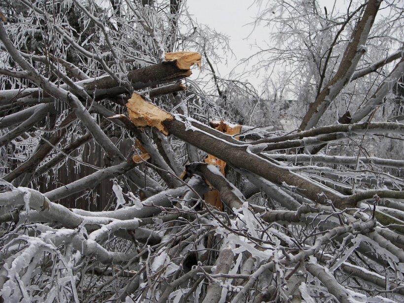 Viscolul a făcut ravagii în Bucegi. Șase turiști au fost salvați de la îngheț (VIDEO)