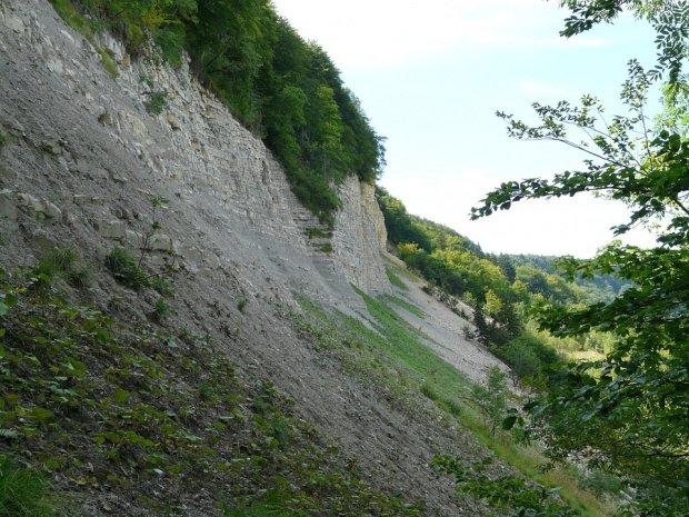 Alunecare de teren în Vaslui, din cauza căderilor masive de zăpadă