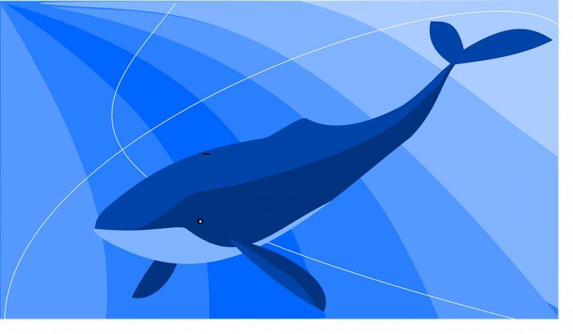 """Tânărul care a inventat jocul """"Balena Albastră"""" a dezvăluit totul. Motivul pentru care a creat jocul este șocant"""