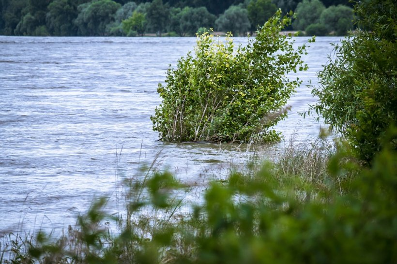 Stare de alertă în Vaslui: Peste 30 de persoane evacuate din casele inundate