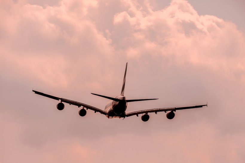 A văzut un cuplu ciudat în avion și și-a dat seama că ceva nu este în regulă. Mai târziu a primit confirmarea. Detaliul care i-a atras atenția