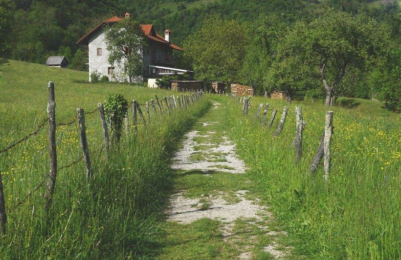 Un sat întreg a fost revendicat de urmașii unui nobil maghiar