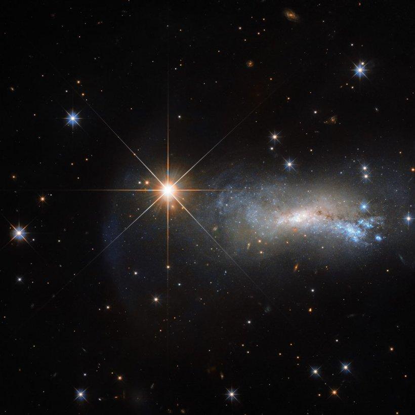Ar putea oamenii să conceapă copii în spațiul cosmic? Răspunsul uimitor al cercetătorilor