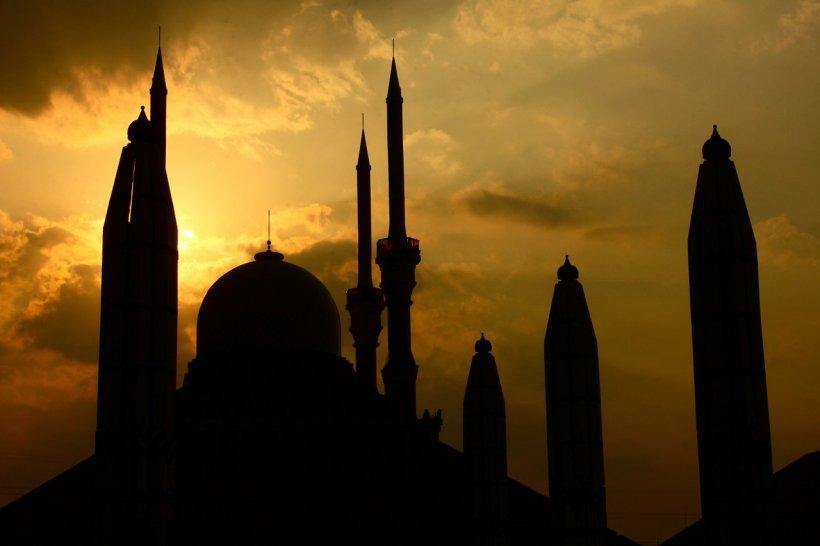 Primarul Sectorului 1, despre construcția mega-moscheii din București